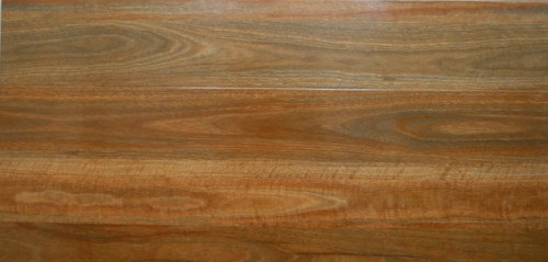 NSW Spotted Gum-2