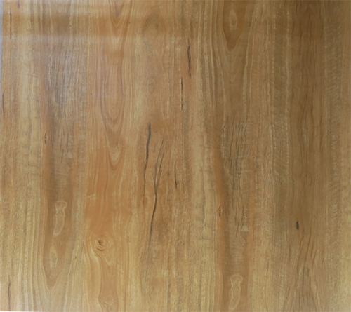 SF-Spotted Gum